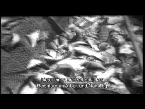 ÜBER WASSER - Trailer